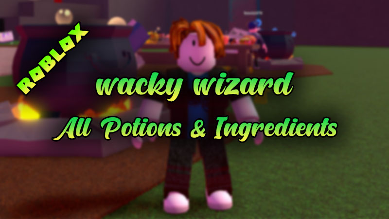 Wacky Wizards Potions and Recipes